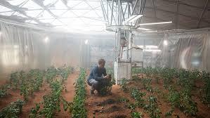 Planting seed on Mars